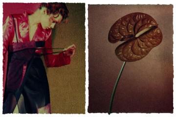 medium_fleur_de_peau_1_.jpg
