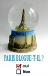 medium_paris_blogue_t_il.2.jpg