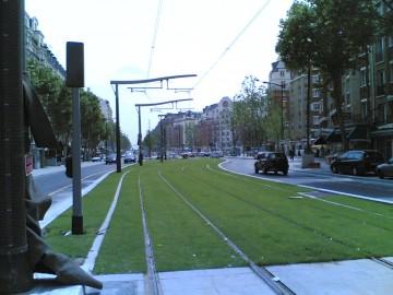 medium_tramway_des_marechaux.jpg